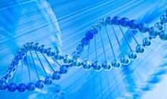 基因精准医疗